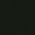 Noir-mat-2-599-pastilleweb-040719-(6)